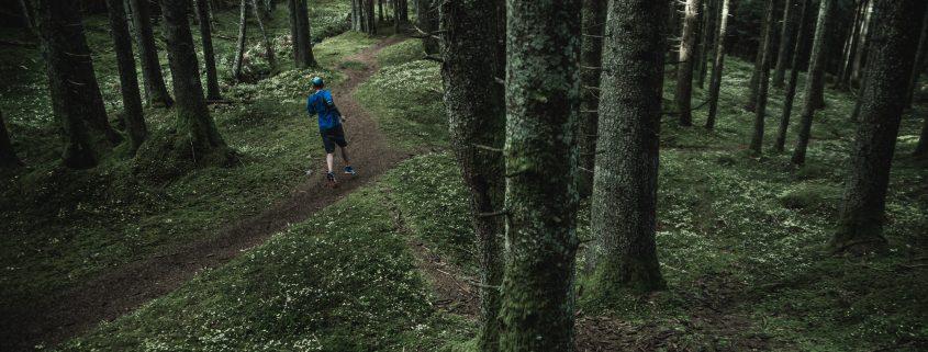 im dunklen wald, running, trailrunning, hike forest, running forest