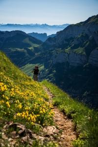 alpstein, wandern alpstein, wanderung alpstein, wandern schweiz, fotospot schweiz, fotografieren wandern schweiz, fotokurs schweiz